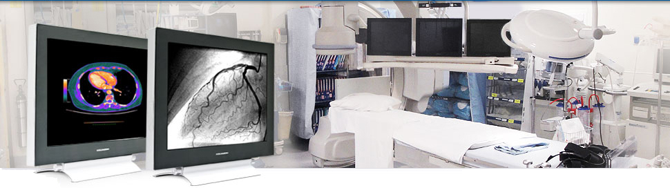 Modalixx Medical LCD Displays